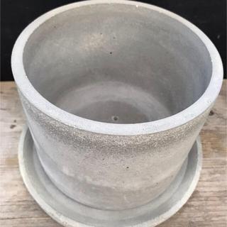 オシャレ セメント鉢 (プランター)