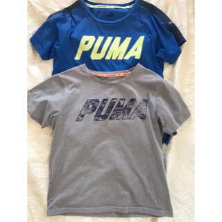 PUMA - PUMA プーマ Tシャツ2枚組 140cm 双子にも!