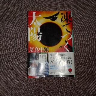 凍てつく太陽(文学/小説)