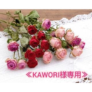 【KAWORI様】スプレー 薔薇ドライフラワーセット No.544(ドライフラワー)
