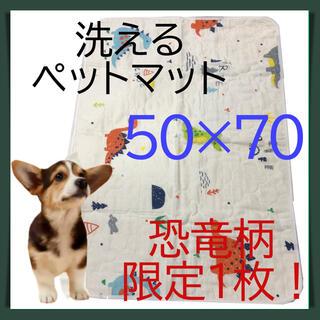 限定1枚!☆漏れない、ずれない、エコな洗えるペットシーツ☆50×70cm
