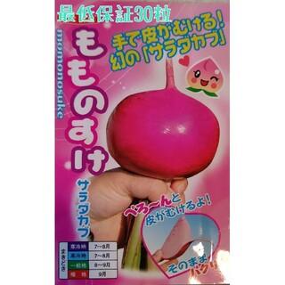 yutanpo様専用 野菜種セット(野菜)