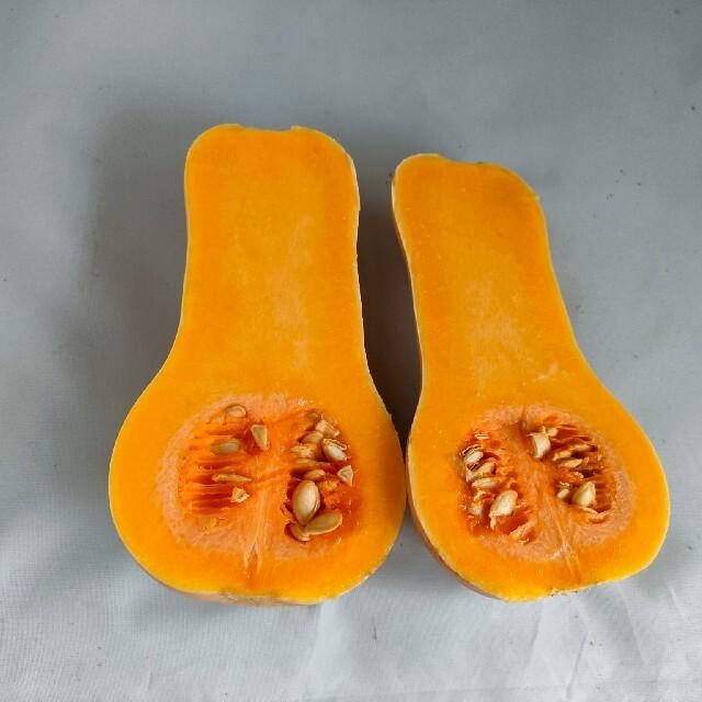 バターナッツかぼちゃ6.0kg(農薬化学肥料不使用) 食品/飲料/酒の食品(野菜)の商品写真