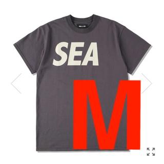SEA - wind and sea  T-SHIRT CHARCOAL-BEIGE  M