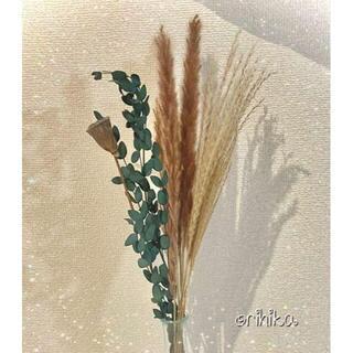 【大人気】ブラウン系ドライフラワー セット 送料込み 観葉植物 【数量限定】(ドライフラワー)