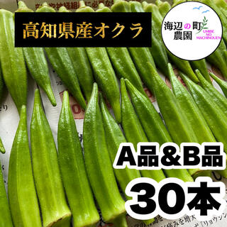 夏野菜【高知県産オクラ】A品&B品⇒30本 新鮮おくら産地直送 即購入OKです!(野菜)