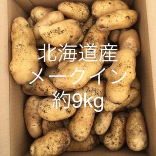 北海道産じゃがいも約9kg(野菜)