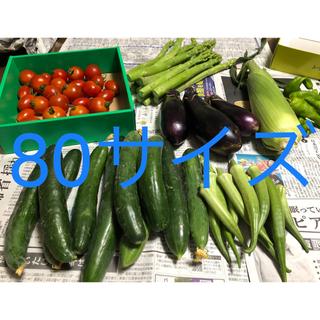 野菜詰め合わせ 80サイズ アスパラ込(野菜)