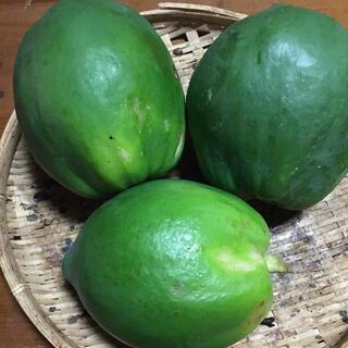 石垣島産  フルーツセット(野菜)