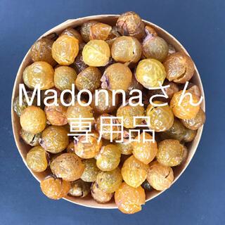 無患子本舗 Madonnaさん専用品 無患子の果皮①(洗剤/柔軟剤)