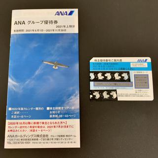 エーエヌエー(ゼンニッポンクウユ)(ANA(全日本空輸))のANA 株主優待券1枚 (2022/5/31まで)と冊子(その他)