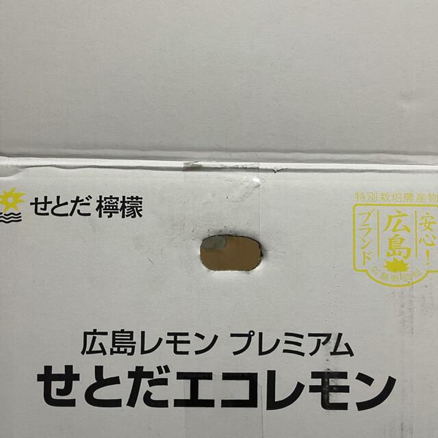 国産レモン 食品/飲料/酒の食品(フルーツ)の商品写真