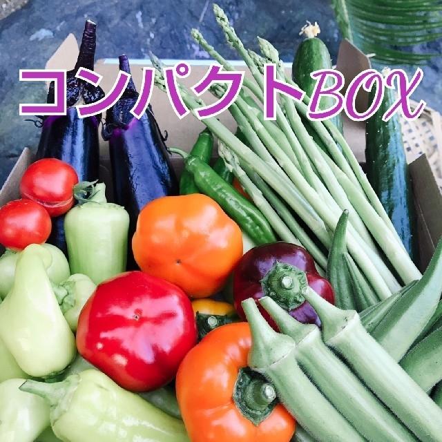 新鮮野菜 コンパクトBOXいっぱいの野菜セット 野菜詰め合わせ 農薬不使用 食品/飲料/酒の食品(野菜)の商品写真