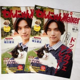 福士蒼汰 わんにゃんWalker 2冊(印刷物)