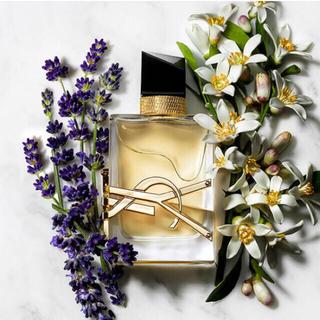 Yves Saint Laurent Beaute - サンローラン香水