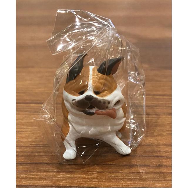 風にも負けず ガチャガチャ ブルドッグ エンタメ/ホビーのおもちゃ/ぬいぐるみ(キャラクターグッズ)の商品写真