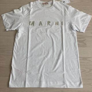 Marni - 新品未使用 マルニ MARNI メタリックロゴ 14Y
