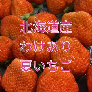 北海道産 訳あり 夏いちご 生苺 1kg