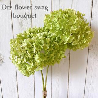 ドライフラワー アナベル 紫陽花 ライムグリーン スワッグ ブーケ Lサイズ