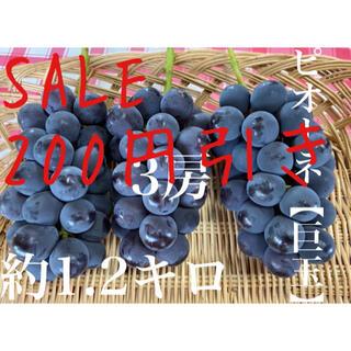 大玉葡萄 ピオーネ SALE 200引き 福岡県産