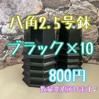 ◎10個◎八角鉢 2.5号 ブラック  2.5寸 シャトル鉢
