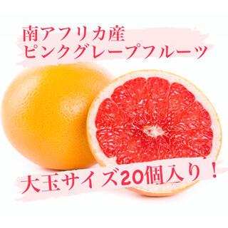 南アフリカ産 ピンクグレープフルーツ!(フルーツ)
