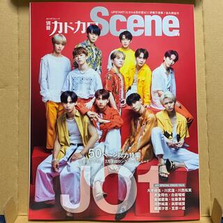 カドカワショテン(角川書店)の別冊カドカワScene 08 JO1(アート/エンタメ)