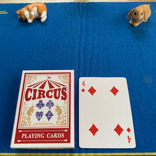 サーカス(circus)のCIRCUS One Way Deck ♦️4(ワンウェイデック)53枚(トランプ/UNO)
