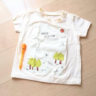 インセクトコレクション Tシャツ