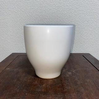 植木鉢 蘭鉢 白 クリーム 丸鉢 鉢 盆栽鉢(その他)