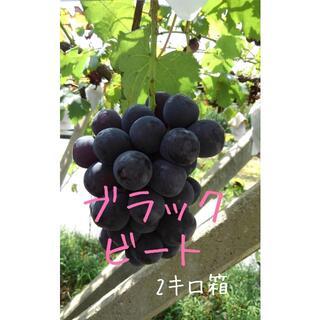 ぶどう【ブラックビート】2キロ箱(フルーツ)