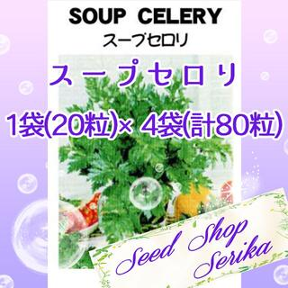 スープセロリ 家庭菜園 野菜 ハーブ 種(その他)