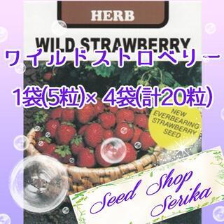 ワイルドストロベリー 家庭菜園 野菜 ハーブ 種(その他)