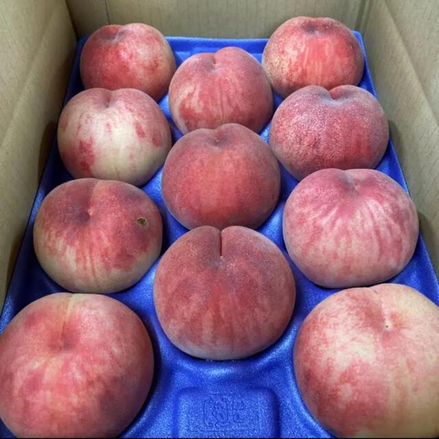 長野県中野市産モモ【あかつき】家庭用3kg 食品/飲料/酒の食品(フルーツ)の商品写真