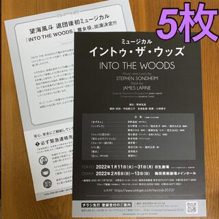 ミュージカル「INTO THE WOODS -イントゥ・ザ・ウッズ-」5枚(印刷物)