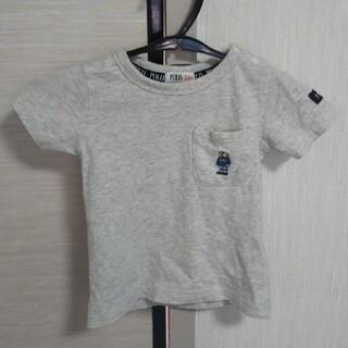 ポロベア Tシャツ