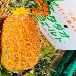 【パイン職人!!】☆タダオゴールド( 4玉 )9キロ以上(フルーツ)