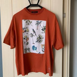 TOMORROWLAND - キャバン caban tシャツ トゥモローランド サカイ apc ロンハーマン