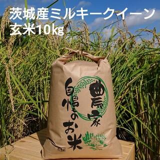 茨城令和2年産ミルキークイーン玄米10㎏(米/穀物)