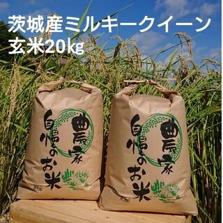 茨城令和2年産ミルキークイーン玄米20㎏(米/穀物)