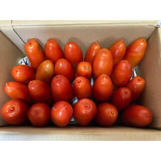 トマト ルンゴ 大量‼️ 25個前後(野菜)