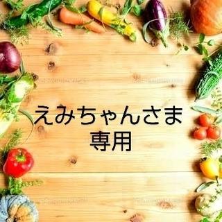 えみちゃんさま 専用 乾燥野菜おまとめ(野菜)