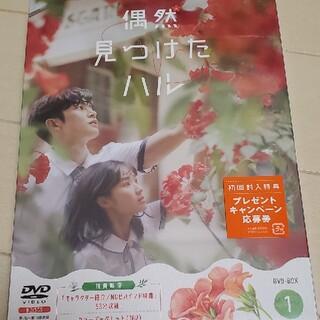 新品未開封初回版偶然見つけたハルDVD BOX1(TVドラマ)