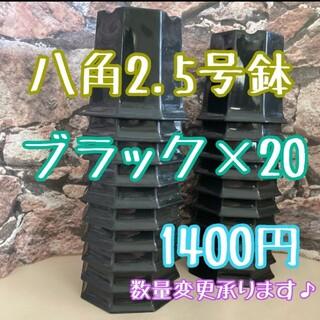 ◎20個◎八角鉢 2.5号 ブラック  2.5寸 シャトル鉢(プランター)