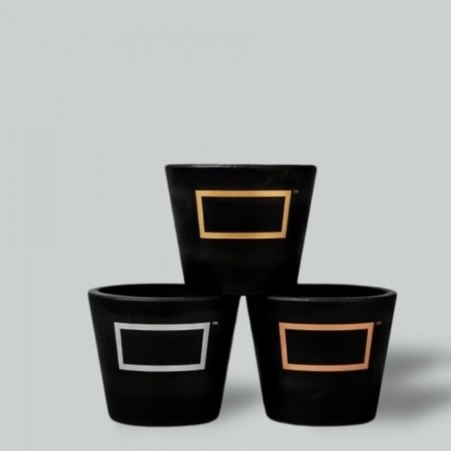 最終値下げ! BOTANIZE ボタナイズ 限定プラ4個鉢セット② ハンドメイドのフラワー/ガーデン(プランター)の商品写真