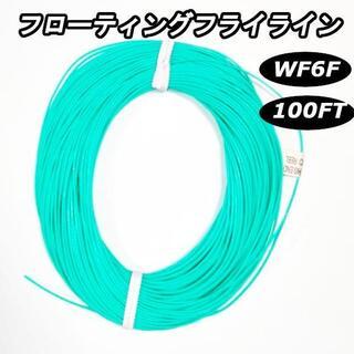フライフィッシング フローティング フライラインWF6F(釣り糸/ライン)