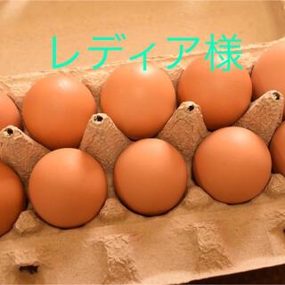 レディア様専用 平飼いたまご30個(野菜)