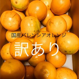 訳あり LL 5kg 国産バレンシアオレンジ 送料無料 有田みかん和歌山県産(フルーツ)