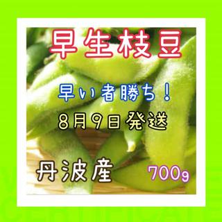 甘い早生枝豆❗️限定品‼️(野菜)