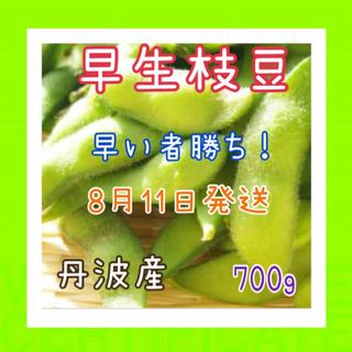 甘い‼️早生枝豆❗️限定品です❗️(野菜)